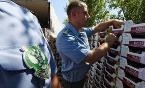 Правительство России позволило осуществлять транзит санкционных товаров